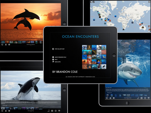 Ocean Encounters e-book showcasing photos of whales, dolphins, sharks, coral reef marine life