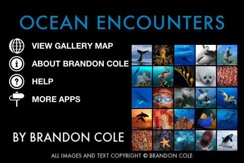 iOS App: Photographic Exploration of Marine Wildlife by Brandon Cole