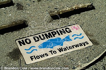 nk0032-D. drains carry pollutants such as motor oil, fertilizers, etc. into rivers and the ocean